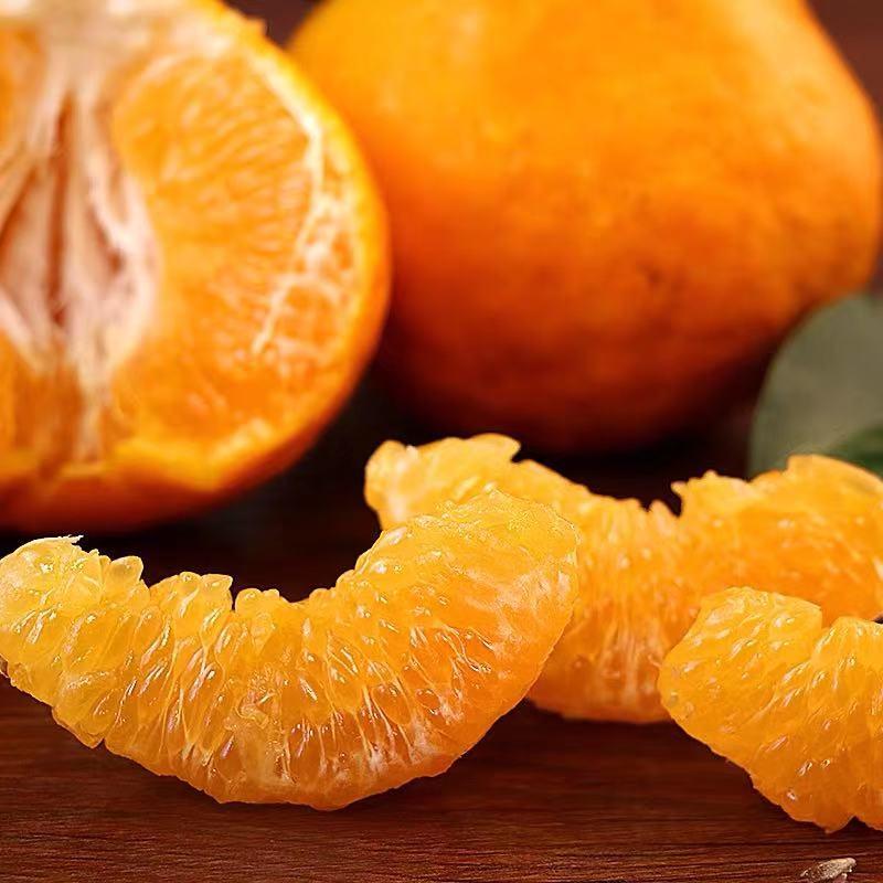 丑橘子10斤春见耙耙柑新鲜水果应季整箱包邮皮薄桔子现摘大果